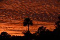 Sunset 1/30