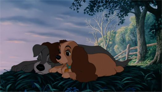 Lady and Tramp at sunrise