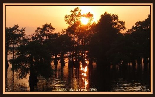 Caddo Lake Minutes Later