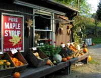 Theme: Farm Buildings - Farm Stand, Vermont in Fall