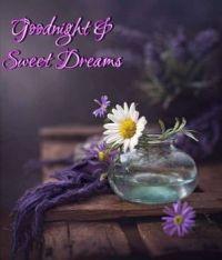 Goodnight - Sweet Dreams