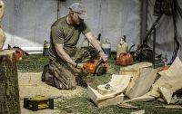 Chainsaw sculptor