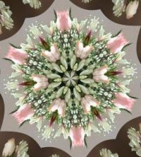 Kaleido of Mother's Day 2018 flowers - extra small