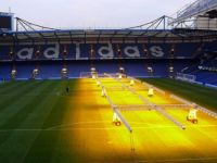 Chelsea pitch - growing the grass
