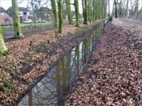 Winterswijk. The ditch divides the low side of the park and the high side