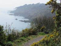 Cliff path, Fermain Bay, Guernsey