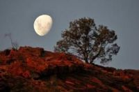 moon over alice springs australia