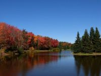 Centennial Park in the Fall