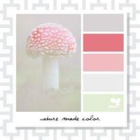 Mushroom Design Seeds