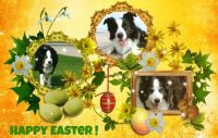 Happy Easter ♥