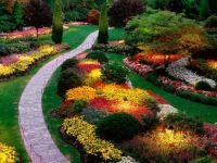 Lit garden