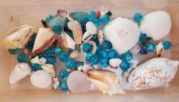 Seashells and Aqua Glass