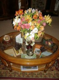 Nature - Seasonal - Summer - Flowers From a Friend
