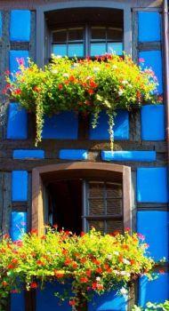 Blue Building, France