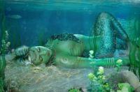 Mermaid Model!