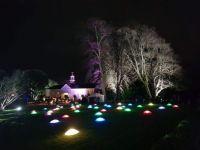 Saltram Christmas Scene