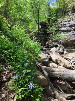 Lost Valley  along the Arkansas