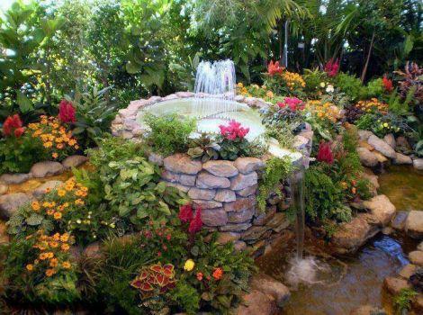 Wonderful rock garden