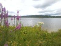 001 Paddy Lake - Sudbury Ontario