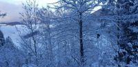 Schnee & Nebel