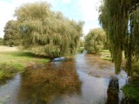 River Stour in Kent