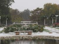 Reinisch Rose Garden, Topeka KS October 26, 2020