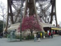 Foot of the Eiffel Tower