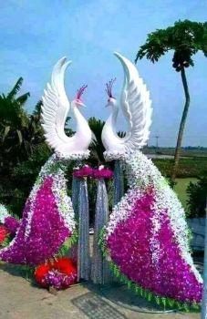 Flower peacocks