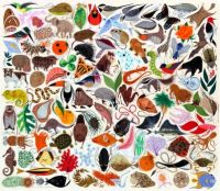 Charley Harper - Tree of Life