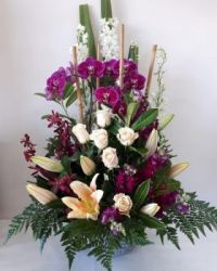 Happiness is... Extra Special Arrangement features a Phalaenopsis Orchid Plant.