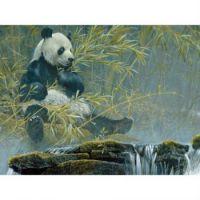 Cobble Hills' Giant Panda