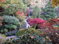 Burchette garden, Canada