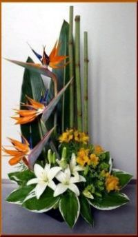 Happiness is.... Magnificient Floral Display of Strelitzia and Lilies.