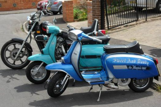 My Scoots