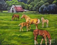 Happy Farm Life by Marcy Conners