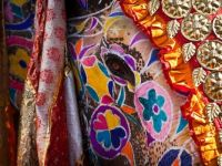 Elephant Festival, Jaipur, India  National Geographic/Marjorie Lang