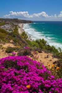 View of Strand Beach and Dana Point Headlands Conservation Area in California
