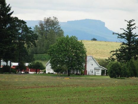 farm in Or.