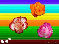 Lovely Roses for June - A Birthday Puzzle for Everyone Born in the Month of June (Jun19P04)