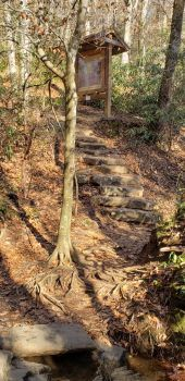 Steps To A Beautiful Trail