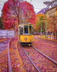 Fall in Milan Italy