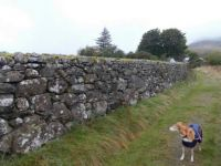 Centuries old dry stone wall at Grassguards Lake District England.