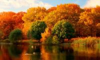 Fall_Foliage_Roadtrips