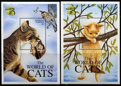 "Themes "" Wild Animals"""