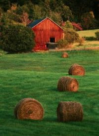 Red Barn and Hayfield