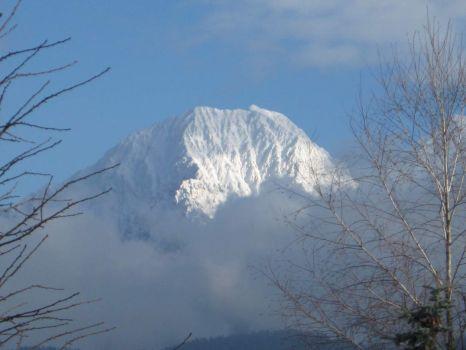 Kočna v snegu - Snowy slopes of Kočna