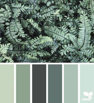 ColorNature_Sue