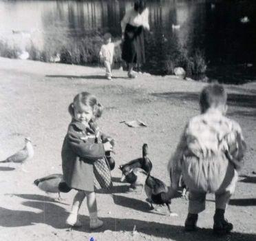 Little Girl & Ducks