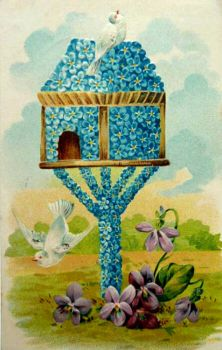 Theme  Birds - Antique Post card