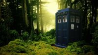The Tardis in the Forest by Peter Lomas